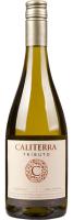 Chardonnay Tributo Caliterra